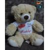 Ursinho de Pelúcia Personalizado com Seu Nome e Frase