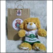 Ursinho de Pelúcia Coritiba - Cãozinho Personalizado com Nome e Número e Embalagem Presenteável